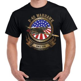 P-40 Warhawk Stars and Stripes Men's Black T-Shirt